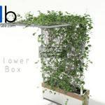 169 Plant 3dmodel 3dsmax