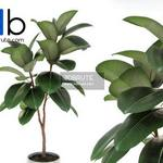 327 Plant 3dmodel 3dsmax