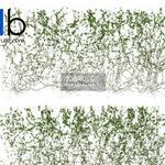 385 Plant 3dmodel 3dsmax