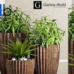 392 Plant 3dmodel 3dsmax