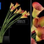 413 Plant 3dmodel 3dsmax