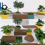 455 Plant 3dmodel 3dsmax