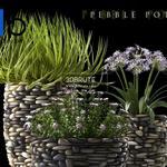468 Plant 3dmodel 3dsmax