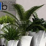 564 Plant 3dmodel 3dsmax