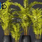 571 Plant 3dmodel 3dsmax