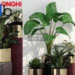 596 Plant 3dmodel 3dsmax