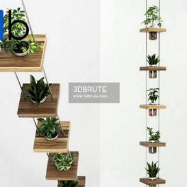 Plant, Tree, plant indoor, 3dmodel, model 3dsky pro, download free