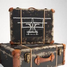 Deco Suitcase Aviation Kare7