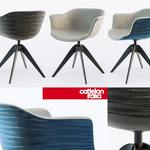Cattelan Italia INDY chair 762