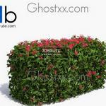 12 Plant 3dmodel 3dsmax