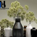 35 Plant 3dmodel 3dsmax