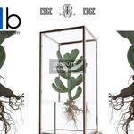 4 Plant 3dmodel 3dsmax