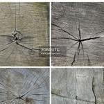 Wood texture 12