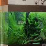 aquarium 101