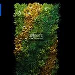60 Plant 3dmodel 3dsmax