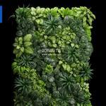 62 Plant 3dmodel 3dsmax