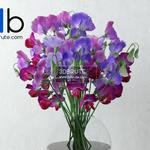 82 Plant 3dmodel 3dsmax