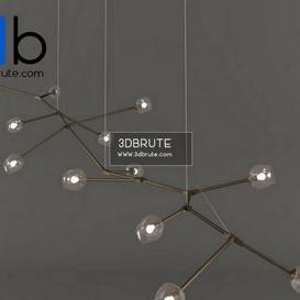 Branching 02 max Ceiling light