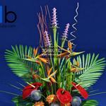 29 Plant 3dmodel 3dsmax
