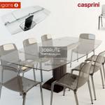 Stolstul casprini calligaris Table & chair 311