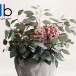 292 Plant 3dmodel 3dsmax