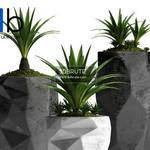 307 Plant 3dmodel 3dsmax