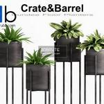 309 Plant 3dmodel 3dsmax