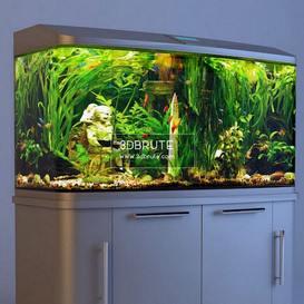 my aquarium max 2014