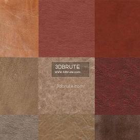 Leather  texture 173