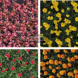 Natural materials  texture 222