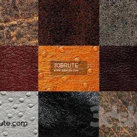 Leather  texture 169