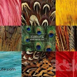 Miscellaneous Texture  texture 188