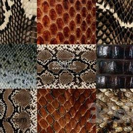 Leather  texture 170