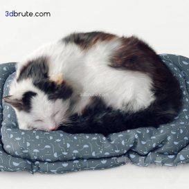 cat 3dmodel 3dsmax (1)