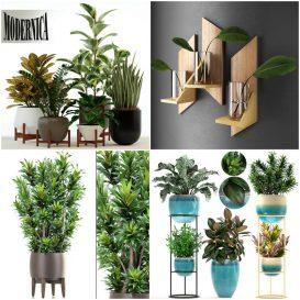 Sell Plant set 2019 340x340 3dbrute