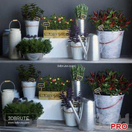 Kitchen garden 2 94 3d model Download 3dbrute