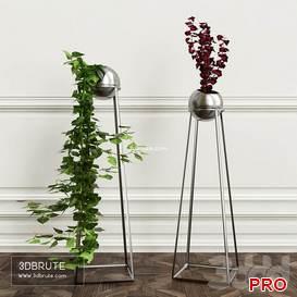 PLANTS 6 87 3d model Download 3dbrute