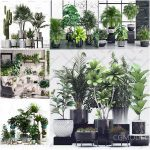 Sell Plant set vol 2 2019 3d model