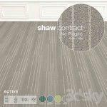 Shaw Carpet Active Wall to Wall Floor No 7