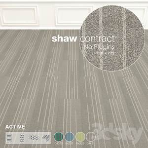 Shaw Carpet Active Wall to Wall Floor No 7  3d model  Buy Download 3dbrute