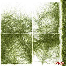 Leaves for walls v3 3d model Download  Buy 3dbrute