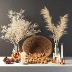 set355  walnut