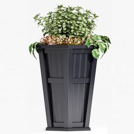PLANT SET  88 3d model Download  Buy 3dbrute