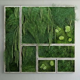 Moss and fern fytowall LT 3d model Download  Buy 3dbrute