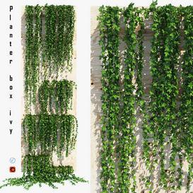 Planter box ivy LT 3d model Download  Buy 3dbrute