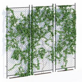 Ivy wall 3d model Download  Buy 3dbrute