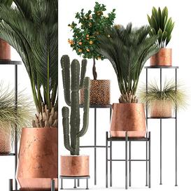 PLANT POT 150219 00 3d model Download  Buy 3dbrute