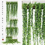 Planter box ivy 2 3d model Download  Buy 3dbrute