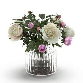 Cream Peonies in ribbed glass vase 3d model Download  Buy 3dbrute