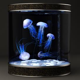 jellyfish 3d model Download  Buy 3dbrute